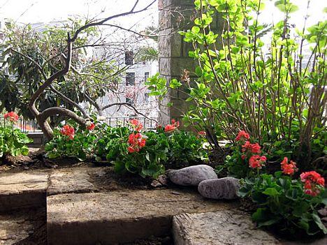 Punica Peyzaj - Değiştirdiğimiz Bahçeler:Etiler'de bir villa