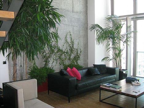 Punica Peyzaj - Değiştirdiğimiz Bahçeler:Levent Loft'da bir daire